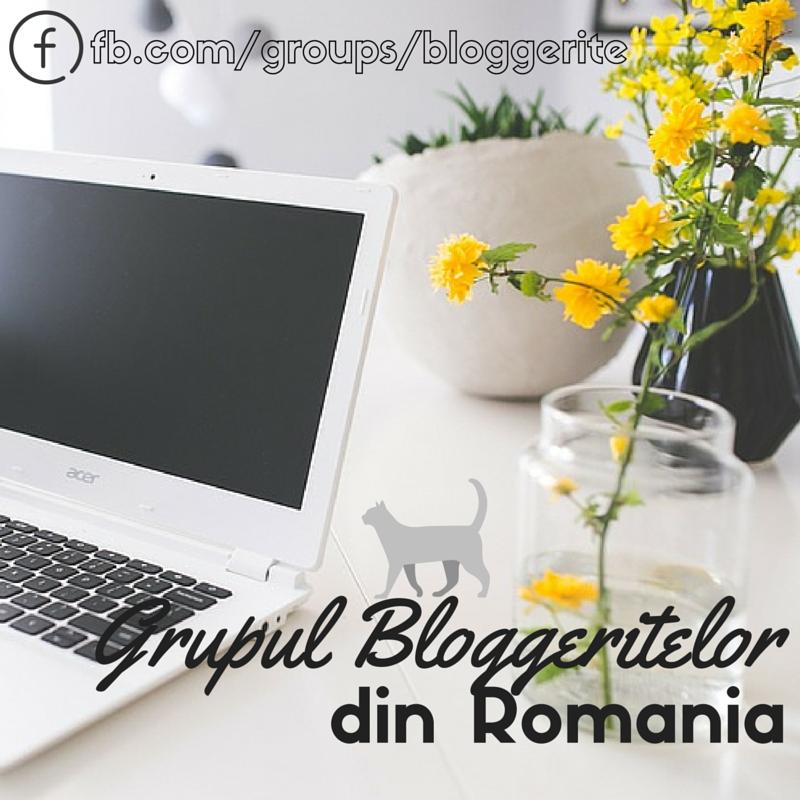 Grupul bloggeritelor