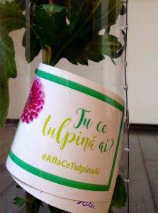 sensiblu_tulpina
